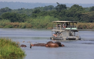 Game Drives in Murchison Falls National Park Uganda