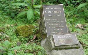 Dian Fossey grave