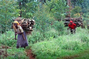 Local People Mount Elgon National Park