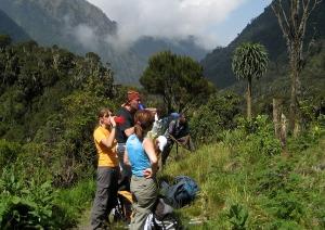 Nature walks Mount Rwenzori