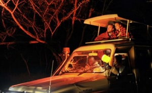 Night Game Drives as a Rwanda Safari activity in Akagera National Park