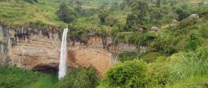 Vegetation Mount Elgon National Park