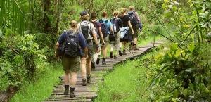 nature walk kibale